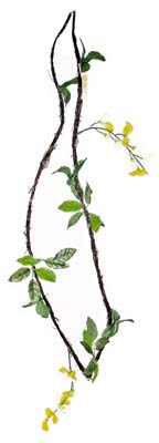 View WISTERIA VINE GARLAND 6 FEET ASSORTED PREPRICED AT $2.99